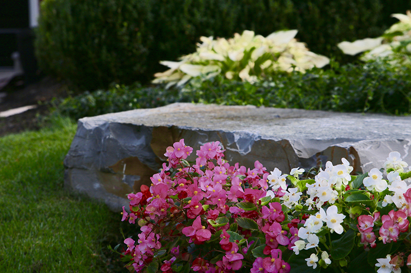 Custom Environments: Oakland County's Premier Custom Landscaper for Over 25 years - IMG_2095
